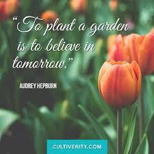 Garden Quotes Simple Garden Gardening Quotes