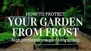 home depot winter garden plant covers home depot plant covers for frost how to protect your