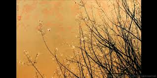 Gold Leaf Painting Crepe Myrtle Ii Gold Leaf Painting Greg Dunn Greg Dunn  Design Photo