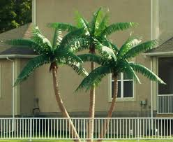 image of a fake palm tree most popular outdoor palms