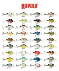 Crankbait Color Chart Details About Rapala Dives To Dt6 Series Balsa Wood Rapala