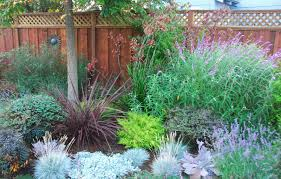 Small Picture Astrid Gaiser Garden Design Lilac Lawns Or Why Water Wise Rocks