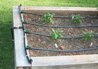 Small Picture Drip Irrigation Irrigation Supplies and DIY Kits for growing