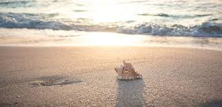50000 Kostenlose Urlaub Und Strand Bilder Pixabay