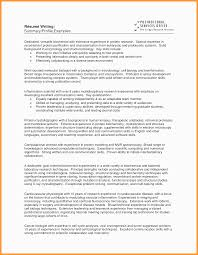 Examples Of Resume Summary For Customer Service Resume Skills Paragraph Prepossessing Job Resume Career Summary On I 29