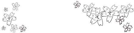 フリー素材春のヘッダーモノトーンのシンプルな鉛筆画の桜の花いっぱい