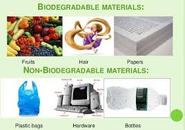 Biodegradable Waste Chart Biodegradable And Non