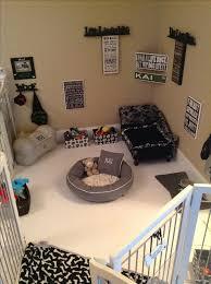 Dog Bedroom Ideas 2
