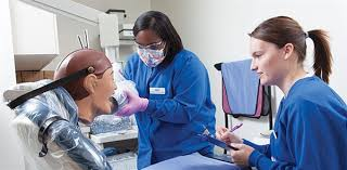 Dental Assistant Skills Can Transferred To Become A Dentist Or
