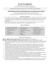 Business Project Coordinator Job Description business invoice ...
