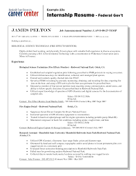 Resume Writing A Federal Resume Wpazo Resume For Everyone
