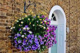 The Graceful Gardener » The Graceful Gardeneru0027s ContainersContainer Garden Ideas For Shade