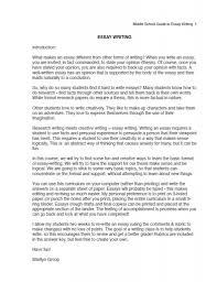 Example Of High School Essays High School Student Cover Letter Sample Resume Genius Essays
