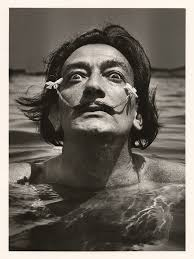 art fights salvador dali vs frida kahlo zouch salvador dali in water flowers in his moustache