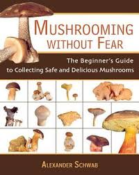 Mushrooming Without Fear The Beginners Guide To Collecting