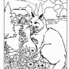 Small Picture Advanced Coloring Pages Printable All About Coloring Pages