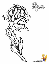 See more ideas about coloring pages, rose coloring pages, coloring books. Rose Flowers Coloring Pages Free Yescoloring Rose Coloring