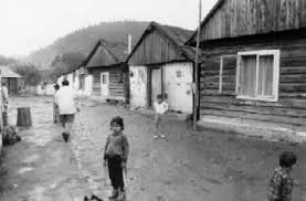contemporary political and academic descriptions of poverty among roma in the maszkowice settlement in 30 2001