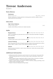General Maintenance Resume Mesmerizing Handyman Resume Samples VisualCV Resume Samples Database