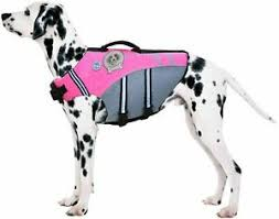Vivaglory Size Chart L Vivaglory New Sports Style Ripstop Dog Life Jacket With