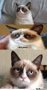 RMX] First Smile Of Grumpy Cat by darkotje - Meme Center via Relatably.com