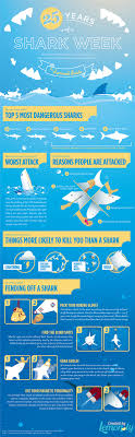 The Shark Survival Guide Infographic Dul Shark Survival