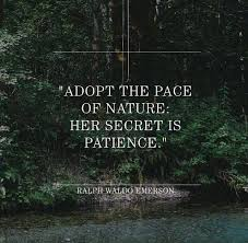Ralph Waldo Emerson Quotes To Live By Marketing Quotes Stunning Emerson Nature Quotes