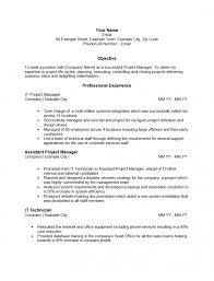 Plain Text Resume Example 366532 Template All Best Cv Resume Ideas