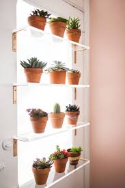 Full Size of Shelf:nice Window Plant Stands With Mini Plant And Folding  Rack At ...