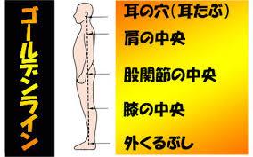 痛みの原因って姿勢(・・? | 東中野の整体・接骨 [陽ので接骨院]