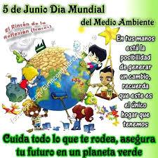 Resultado de imagen para dia mundial del ambiente