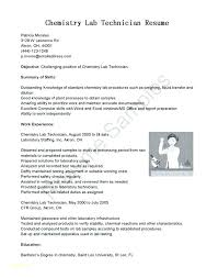 Computer Technician Resume Objective Classy Sample Resume Objective Example Objectives For Resumes Example