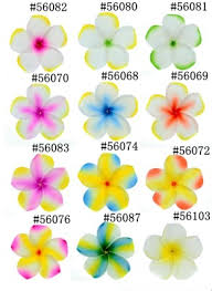 Foam Frangipani Plumeria Flowers