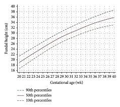 Fundal Height Growth Curve At The 90th 50th And 10th