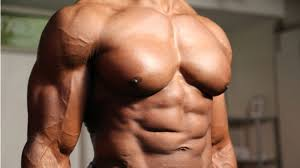 the ultimate 28 day fat burning t and meal plan to lean muscle muscle fitness