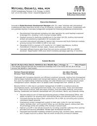 Get An Interview With The Help Of Our Executive Resume Examples ...