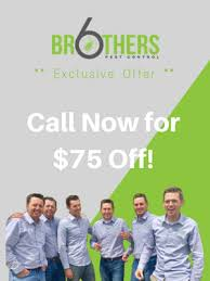 brothers pest control. Beautiful Brothers Pin It On Pinterest Six Brothers Pest Control For S