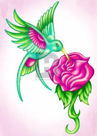 hummingbirds and flowers drawing. Unique Hummingbirds Drawing Tutorial How To Draw A Hummingbird With Rose In Hummingbirds And Flowers N