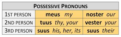Possessive Pronouns Paradigm Dickinson College Commentaries
