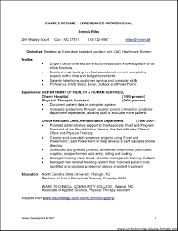 cover letter resume examples for it professionals resume examples cover letter it professional resume template sample for a good samplesresume examples for it professionals extra
