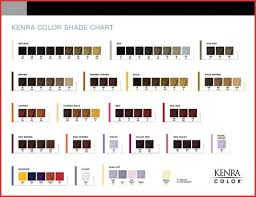 List Of Ion Hair Color Chart Demi Pictures And Ion Hair