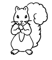 Squirrel Coloring Pages Coloring Pages Of