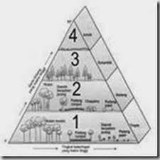 Gegaran nyinau basa jawa 3 kelas xii sma/smk/ma. Gegaran Nyinau Basa Jawa 3 Kelas Xii Ilmu Link