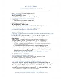 cv sample sample customer service resume cv sample sample director cv director cv formats templates professional cv templates football player