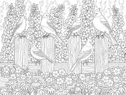 Gardening Coloring Pages Made By Coloring Sheets Gardening Colouring