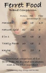 Ferret Food Chart Ferret Food Chart Squeaks And Nibbles Pertaining To Ferret