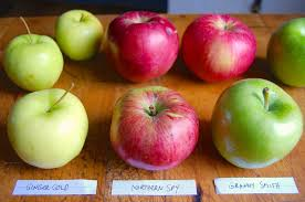 Types Of Apples Chart The Very Best Pie Apples King Arthur Flour