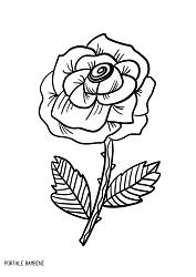 Disegni Di Rose Da Colorare Con Spine Disegno Una Rosa The Baltic Post