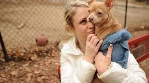 Shelton Aldermen approve two-story barn on dog park property - Opera News