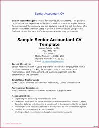 Accountant Cv Sample Free Free Online Invoices Download Tags Free Online Invoices Artistic Cv
